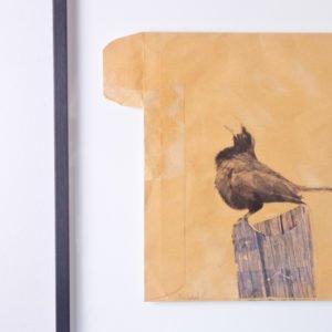 Blackbird calling Mandy Cleveland Art, Pedddle