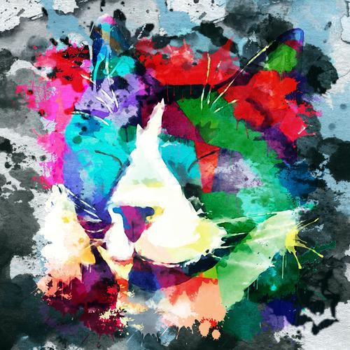 Colourful Abstract Cat Painting