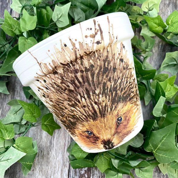 Hedgehog Plant Pot