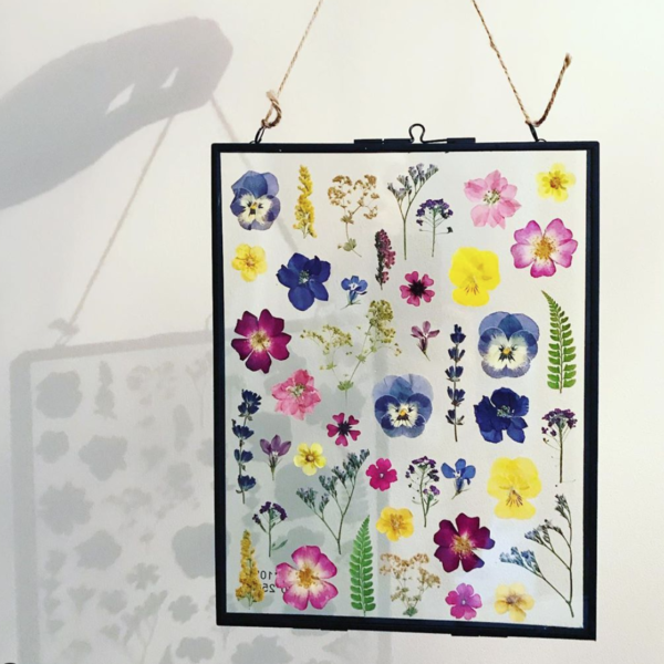 Glass house flowers, picture frame. Pedddle