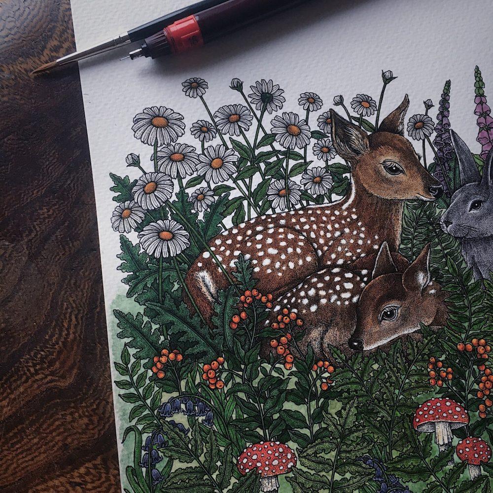 Rheannon Ormond Illustration, Pedddle