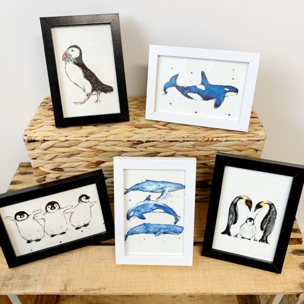 Whale Tail Minis, Whale Tail Art. Pedddle