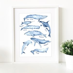 Whale Tail Art Marine Life Poster. Pedddle