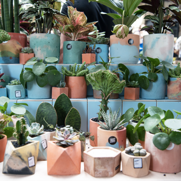 Urban Jungle East at Old Spitalfields Market with Green Rooms Market 2, Pedddle