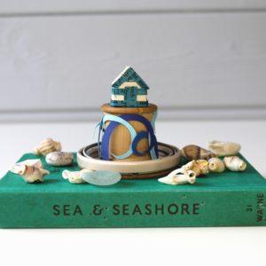 Beach hut dome book