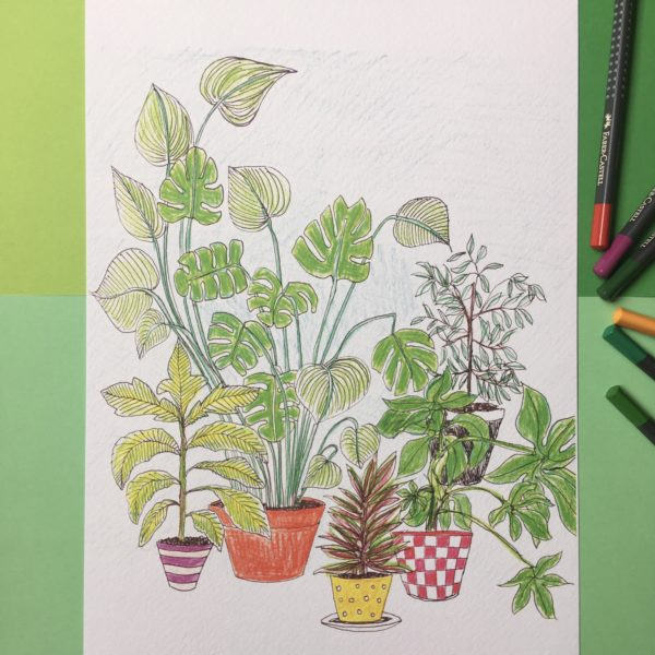 Illustrated print, plants ahoy! By Made by Nomela