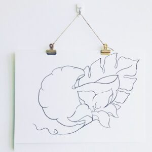 Slipped Ink, Monstera leaf line drawing. Pedddle