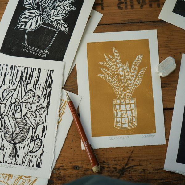 LDMDesign-Plant Lyf
