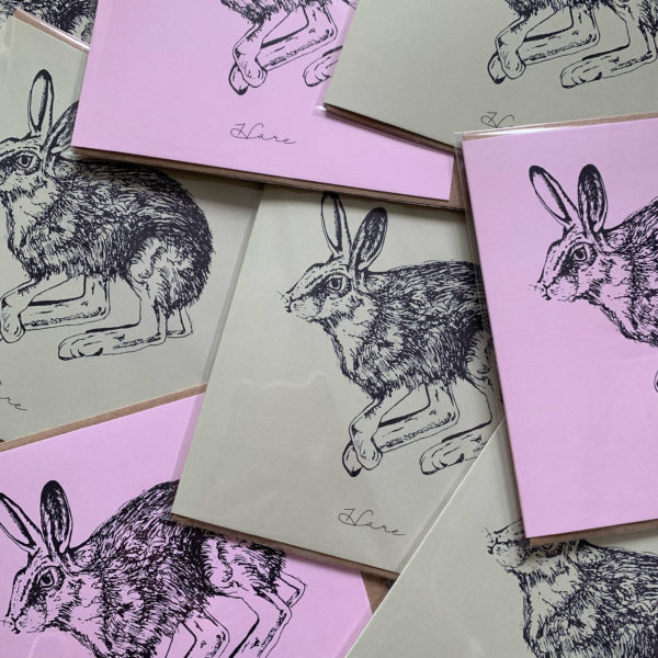 Pink & Green Hare Cards