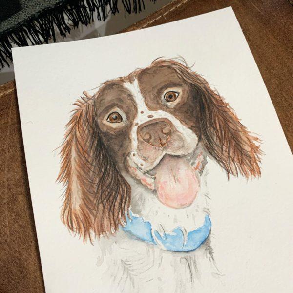 Oscar - Dog Portrait