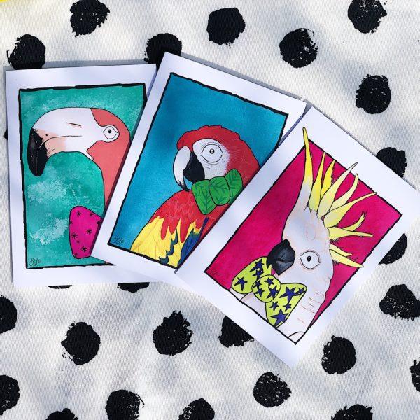 Sarah Downes Design set of 3 A6 sized cards, Flamingo parrot and cockatoo
