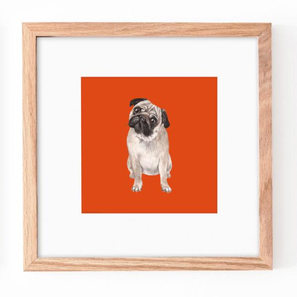 Laura Elizabeth Illustrations, Pug Print in square wooden frame