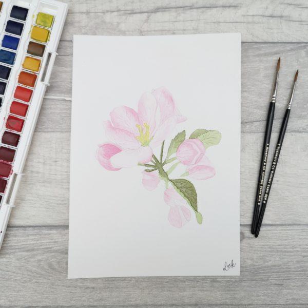 DotK Design, Watercolour blossom painting