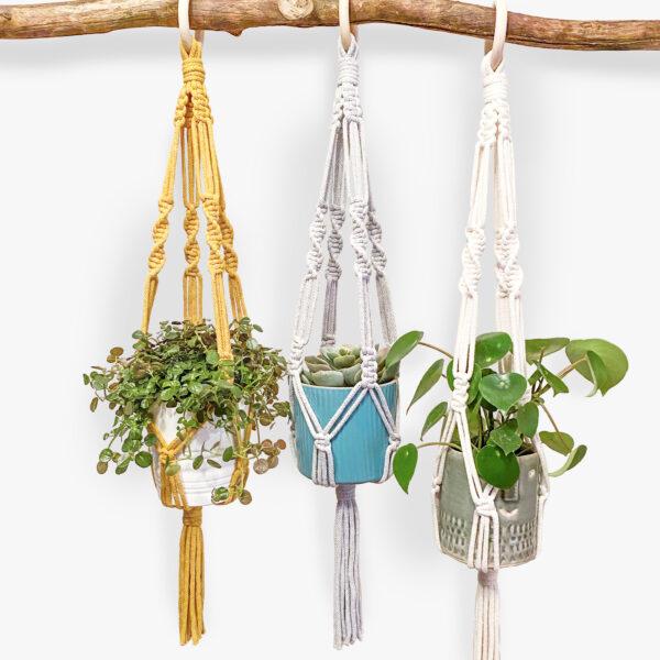 Macrame Plant Hangers in Cream, Grey and Mustard