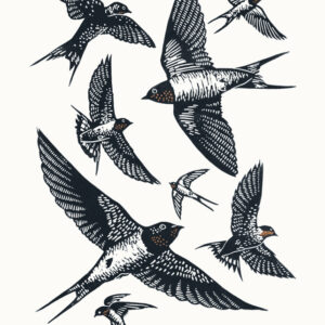 Swallows A3 linocut poster-print, James Green