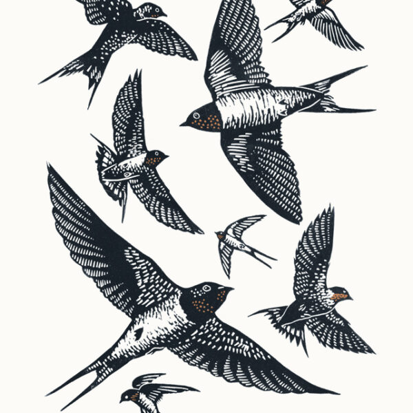 Swallows A3 linocut poster-print, James Green