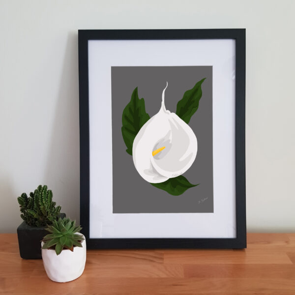 Alison Butler Art, Calla Lily Digital Art Print, Black Frame, Floral image, Lily Picture