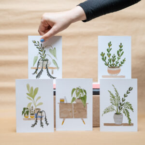 Natural Home - House Plant Inspired Cards - Set of Six - Sarah Anne Draws