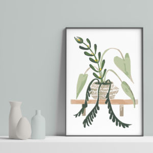 Natural Home - Plant on Shelf - House Plant Inspired Art on turquoise background with vases- Sarah Anne Draws