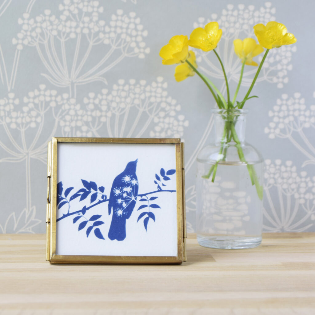 The Way to Blue Blackbird and Cow Parsley Cyanotype in gold edged glass frame