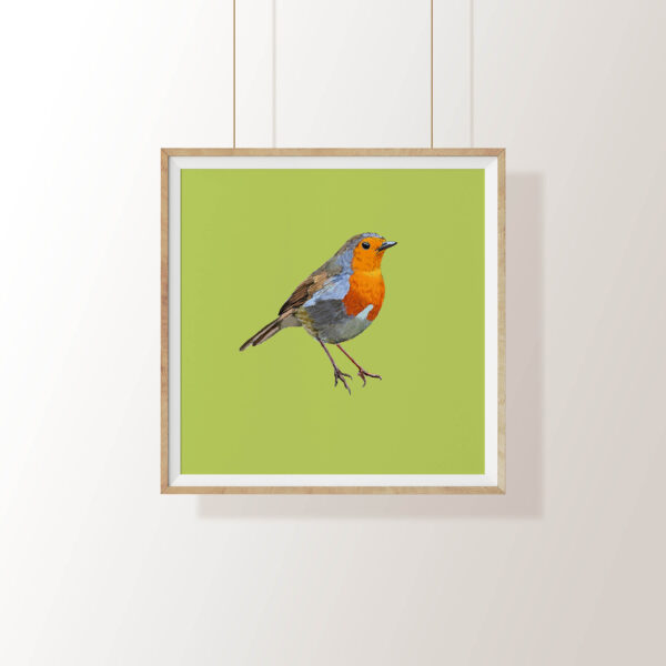 Robin bird print by Fully Fledged Art , Pedddle