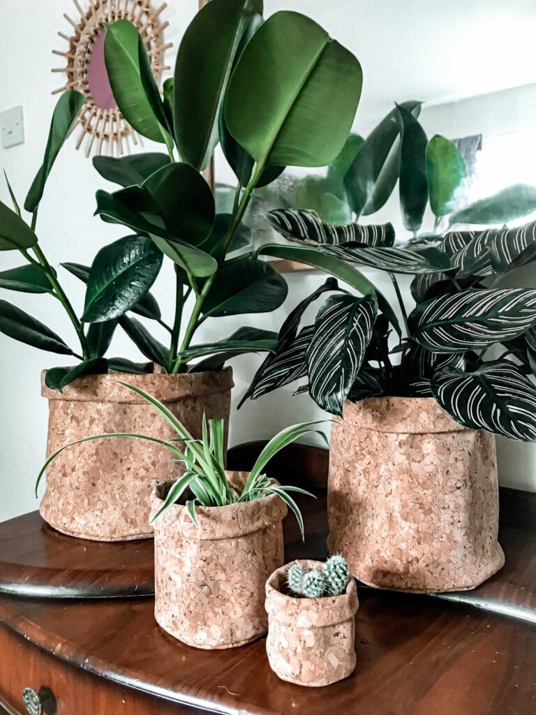 No16 Interior, set of four gold fleck cork planters with plants.
