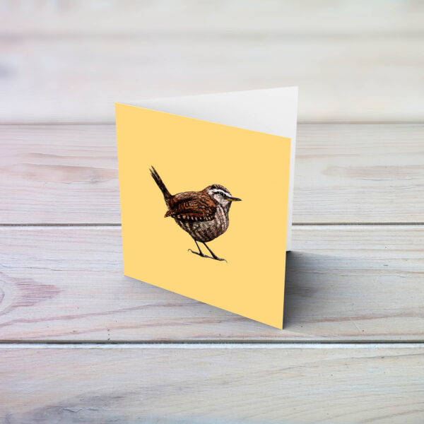 Wren eco friendly illustrated greetings card by Fully Fledged Art