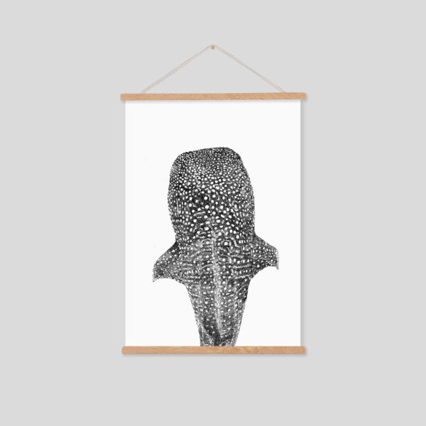 Bamber Prints Black and White Whale Shark Print in Wooden Frame Pedddle