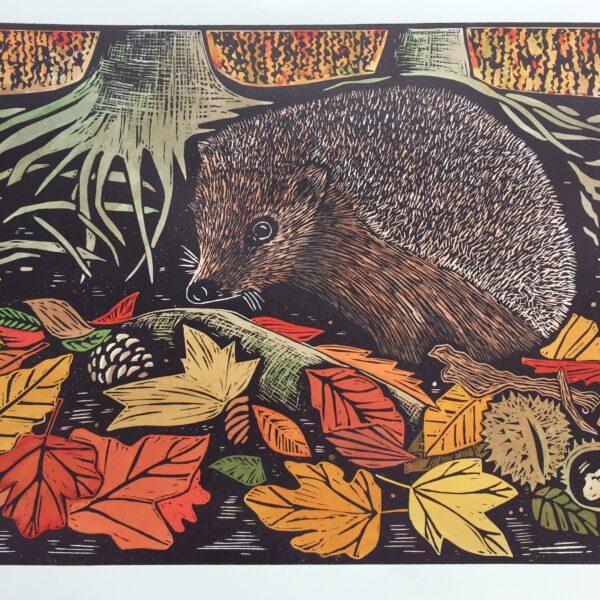JaneDignumArtworks, Linocut prints. Autumn Hedgehog.