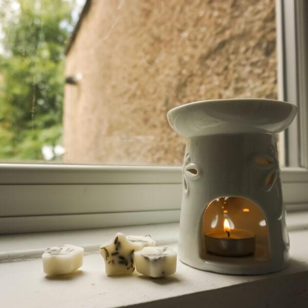 Living Jar, Hand Poured Natural Candles, Botanical Wax Melts