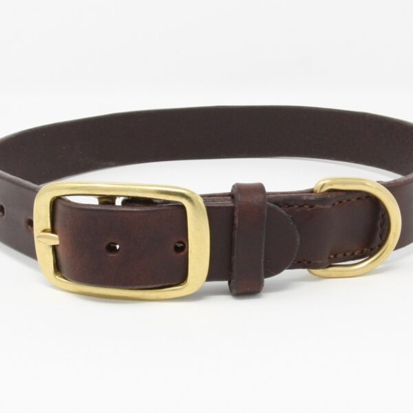 Happy Hedgerow, brown leather dog collar with brass buckle