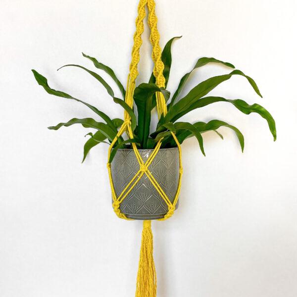 BrambleBlessings - Macrame Plant Hanger in Mustard Yellow