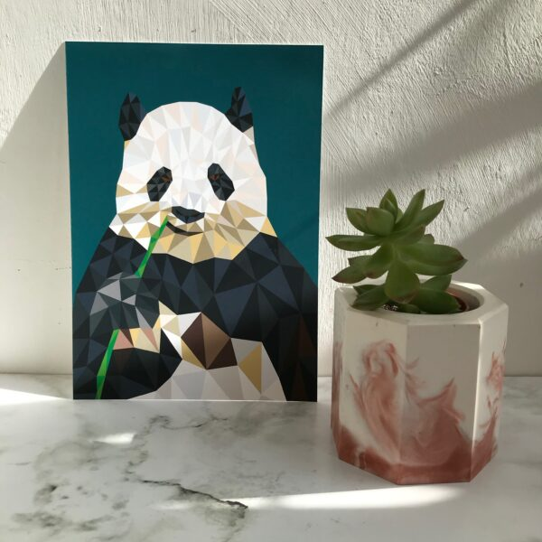 Romy Design Panda Print in a geometric design with dark teal background printed on 230gsm matte photo paper