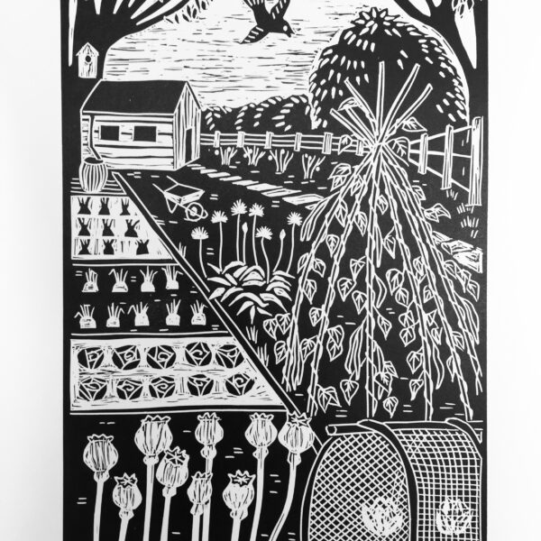 Jane Dignum. Poppies on the Allotment. Limited edition Linocut