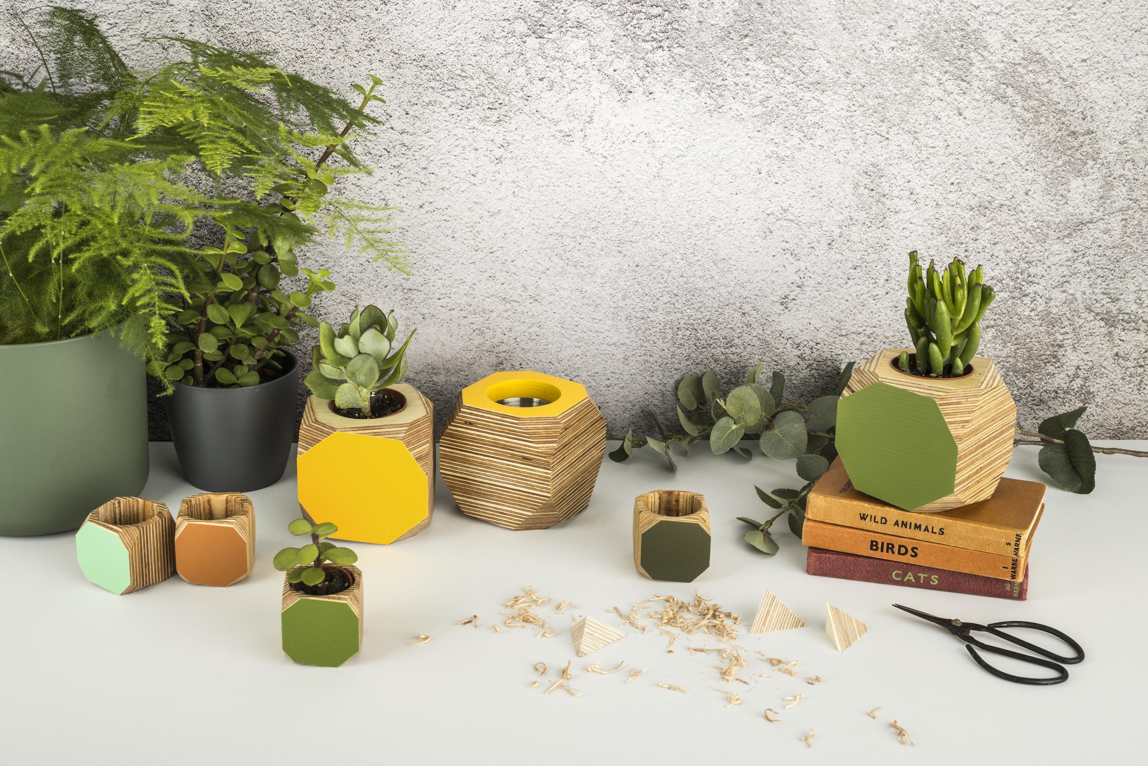 Colourful planter or desk tidy