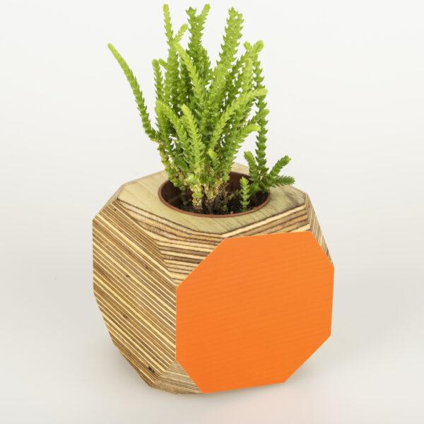 Colourful planter or desk tidy - orange