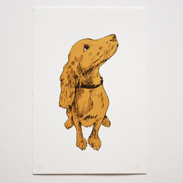 Golden Puppy screen print by Fiona Hamilton