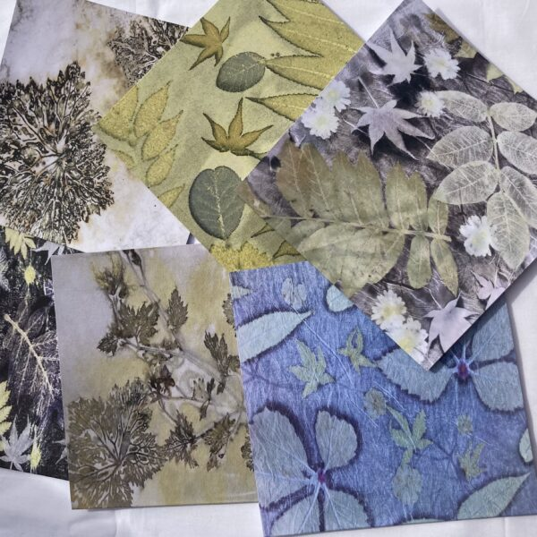 By Maggie Naturally Greetings cards, reproductions of original botanical prints