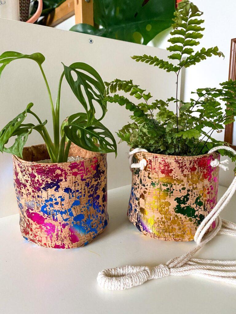 No16 Interior - Rainbow Cork Planters