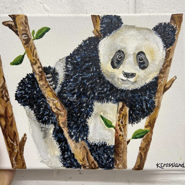 Katie Crossland Art, East Side, Watercolour Panda Painting, Black and White, Colourful Art on Canvas
