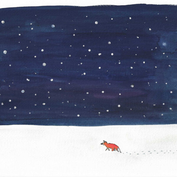 Orange fox walking on the snow with footprints against a midnight blue sky with stars