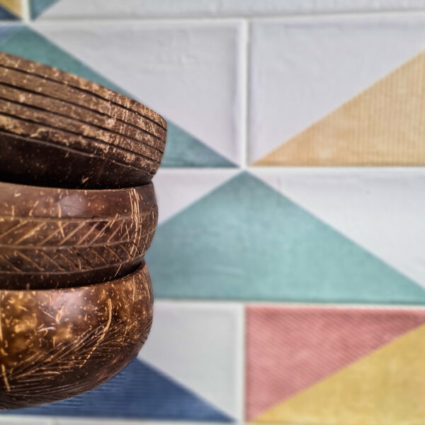 Coconut food bowl