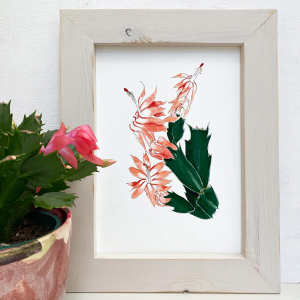 Jen and the beartree, Christmas cactus art print in handmade wooden frame