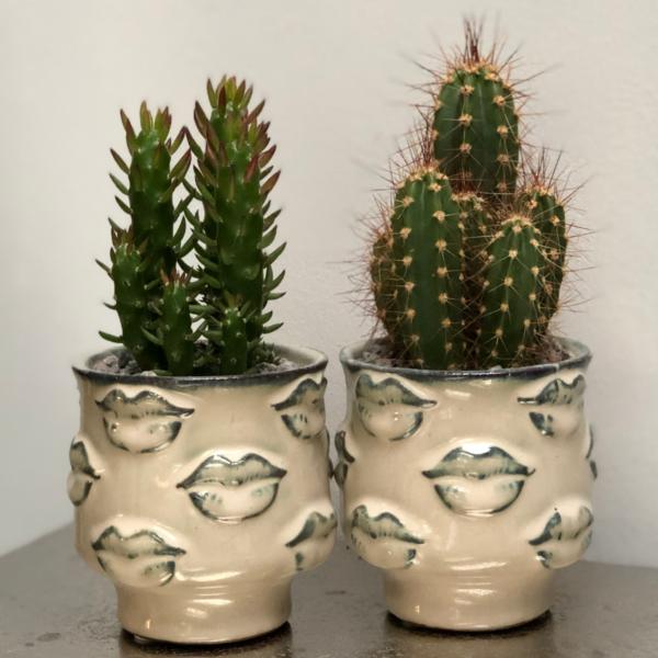 Ceramic lips pots planting kit, Cactus Parlour