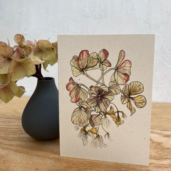 Jen and the beartree, Hydrangea notecard on wooden table