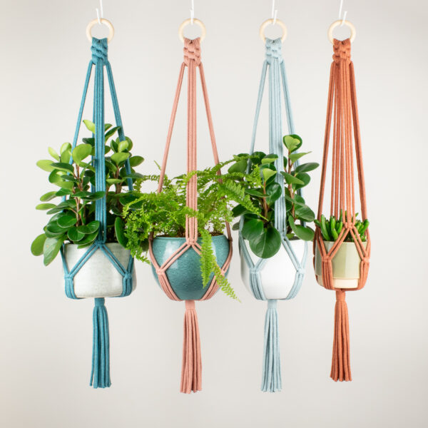 Rima Linden makes macrame plant hangers, recycled cotton colourful minimal macrame plant hanger with wooden ring