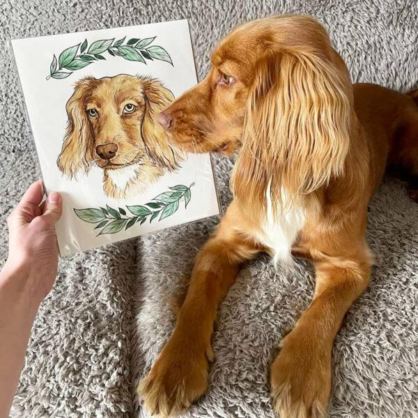 Watercolour Dog Portrait being held next to Cocker Spaniel Dog