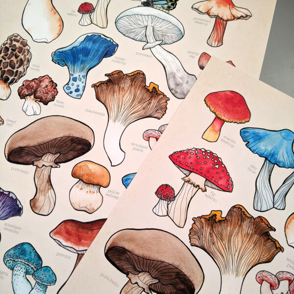 Mushroom Watercolour Posters next to eachother laying flat on a table