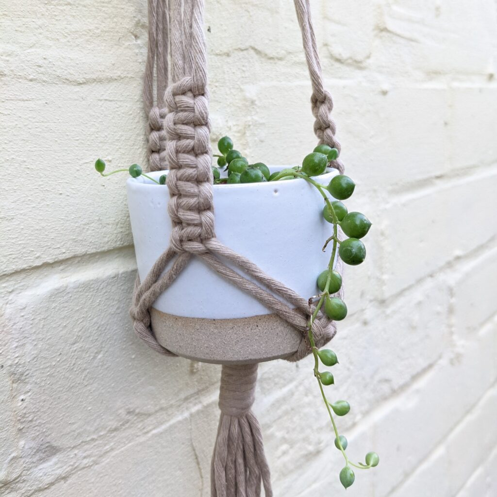 Create Space, Mini Plant Hanger in colour sand, with white pot and small string of pearls plant