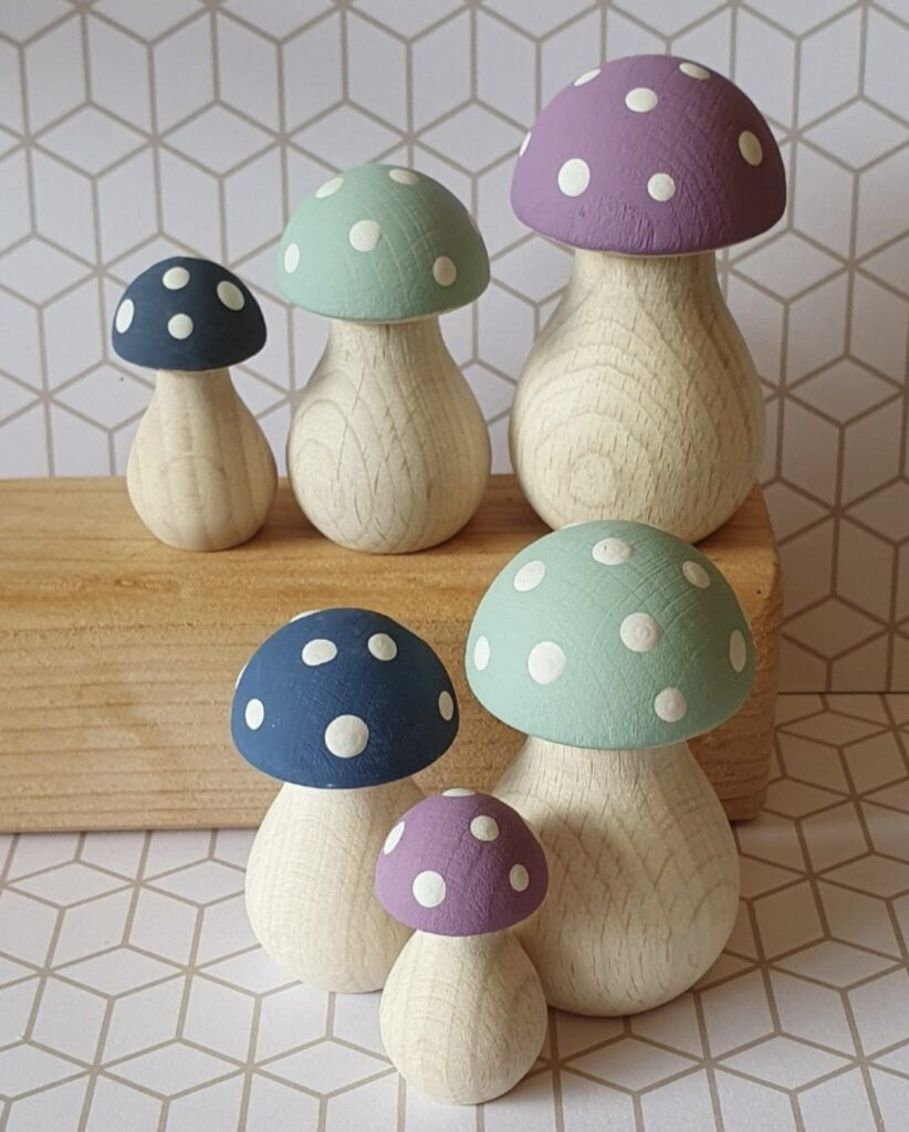 Cynefin Crafts, Set of Painted Mushrooms